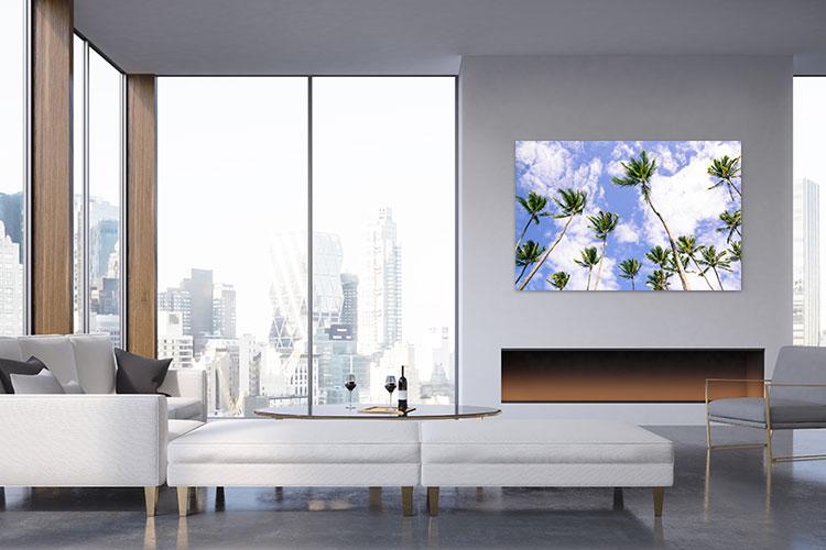 Chelsea-Heller-Photography-Fine-Art-Blue-Sky-Palms-Demo