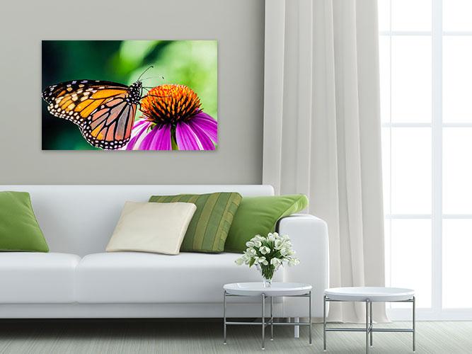 Chelsea-Heller-Photography-Fine-Art-Butterfly-Kiss-Demo-3