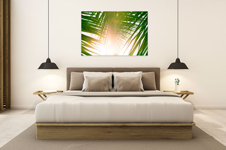 Chelsea-Heller-Photography-Fine-Art-Coco-Leaf-Light-Demo