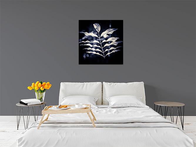 Chelsea-Heller-Photography-Fine-Art-Floating-Leaves-Demo