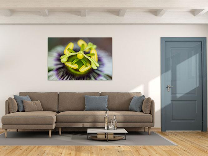 Chelsea-Heller-Photography-Fine-Art-Lilikoi-Blossom-Demo-2