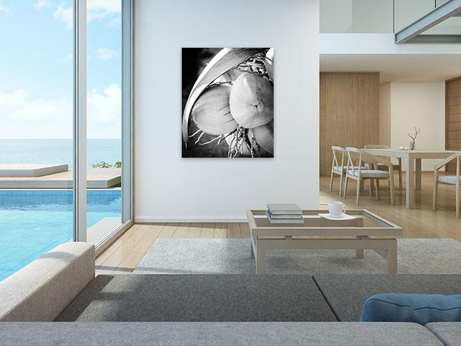 Chelsea-Heller-Photography-Fine-Art-Supple-Nectar-(bw)-Demo-2