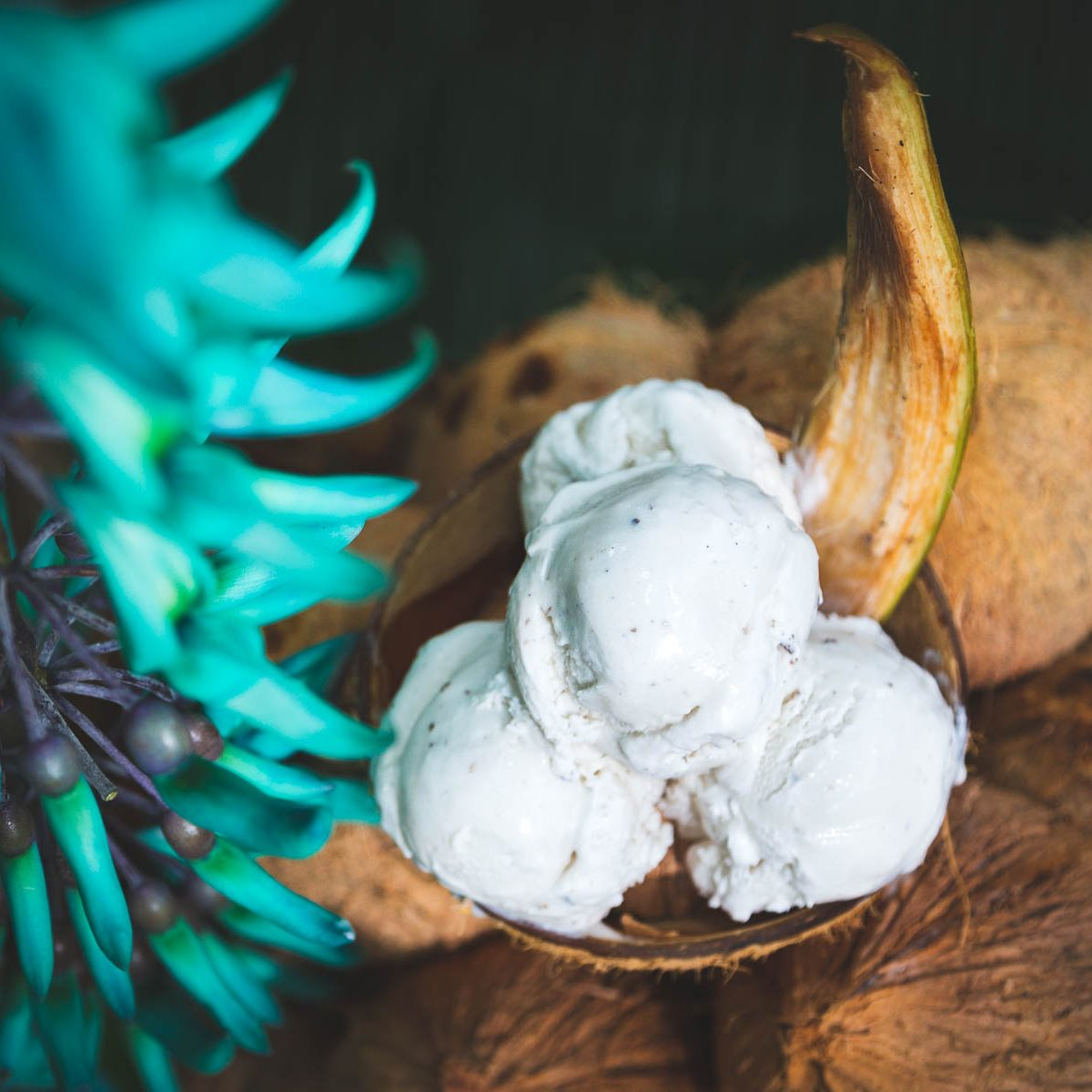 Chelsea-Heller-Photography-Commercial-Photography-Food-Photography-Coconut-Glen-6